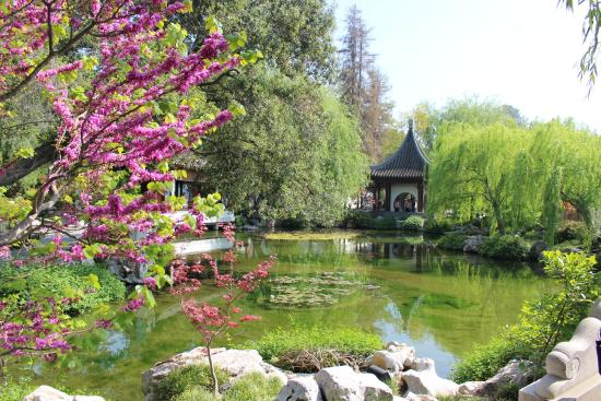 Picture Of The Huntington Library Art Collections And Botanical Gardens San Marino