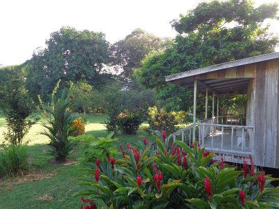 Parismina, Costa Rica: lodges from outside