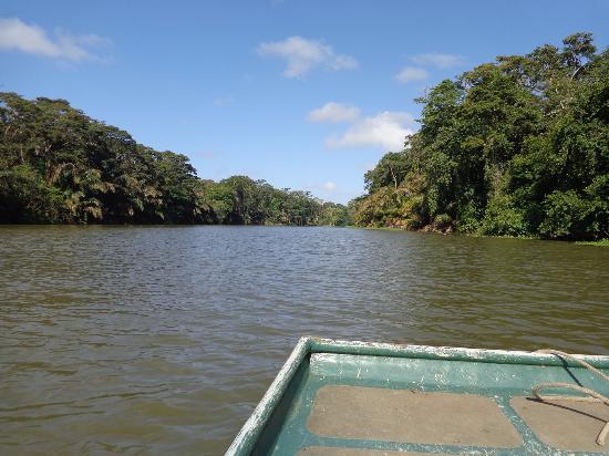 Parismina, Costa Rica: boat tour in the park