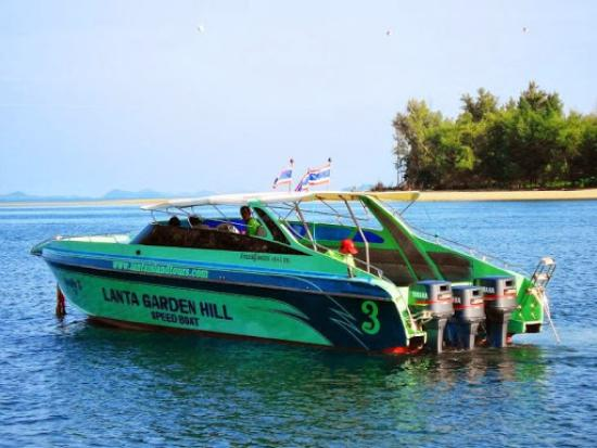 Koh Lanta Tourism Day Tours: Koh rok  by  ( lanta garden hill  speed boat )
