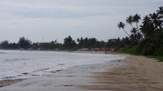 Beach - Weligama Bay Resort Photo