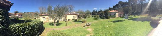 Caldana Photo