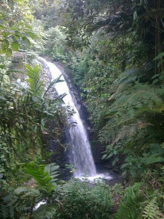 Hotel Kopal Ecuador: waterfall in the jungle close by