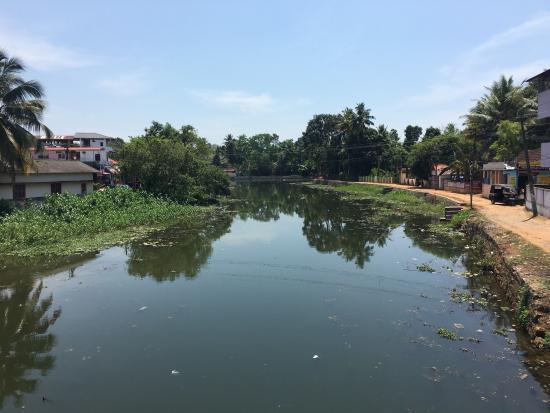 Kuttanad, Ινδία: photo2.jpg
