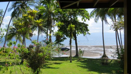Playa Cativo Lodge: View from Cabina