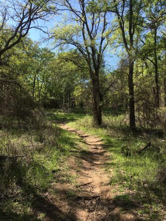 Whitney, Teksas: photo8.jpg