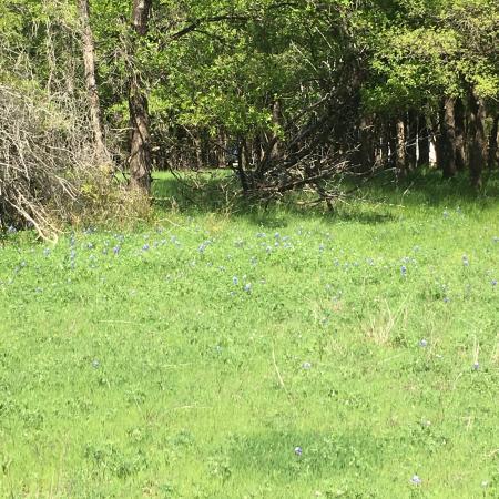 Whitney, Teksas: photo9.jpg