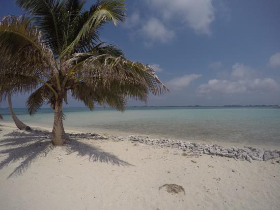 Utila Cays: the beach