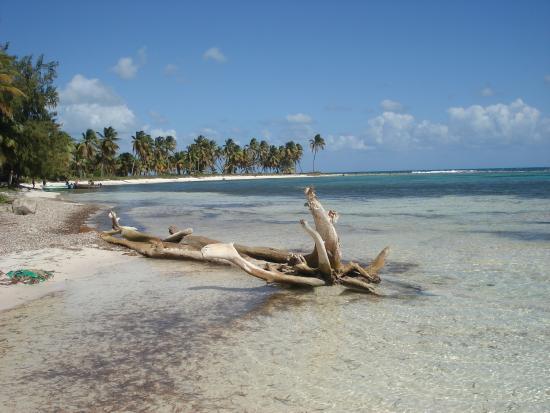 Seavistours Saona Island Beach