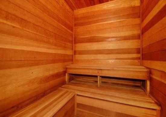 Comfort Inn Waverly: Sauna