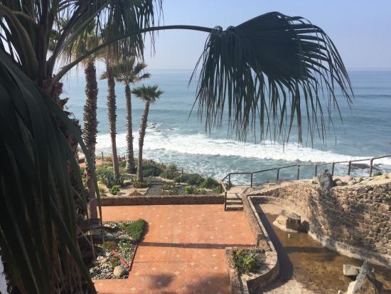 Las Rocas Resort and Spa: photo5.jpg
