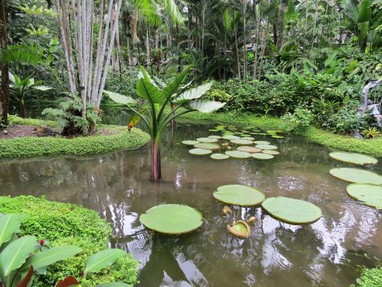 Hotel Miramar: Botanical gardens, Singapore