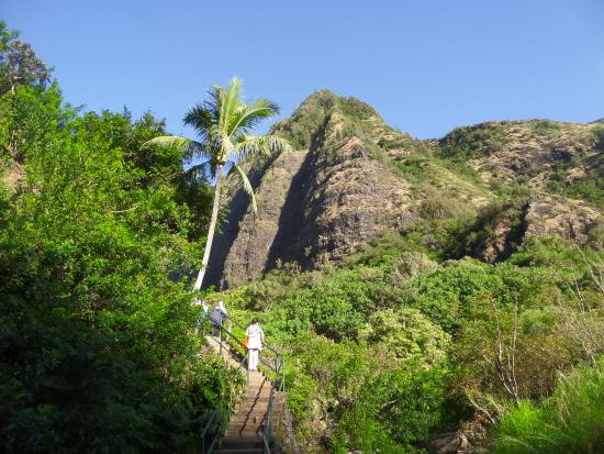 Hawaii Nature Center of Iao Valley