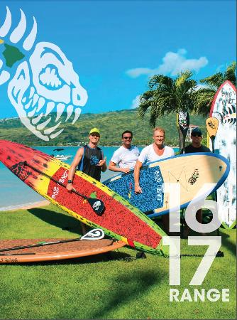 Blue Planet Surf: Stand Up Paddle with Blue Planet, Hawaii's SUP HQ