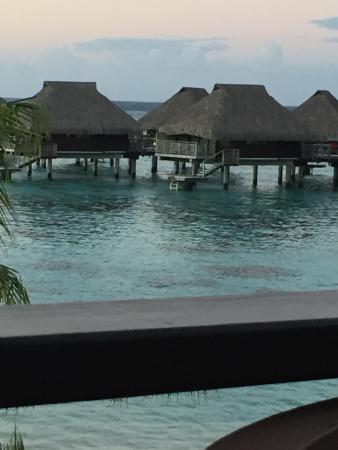 Hilton Moorea Lagoon Resort & Spa: The huts over the water - best choice
