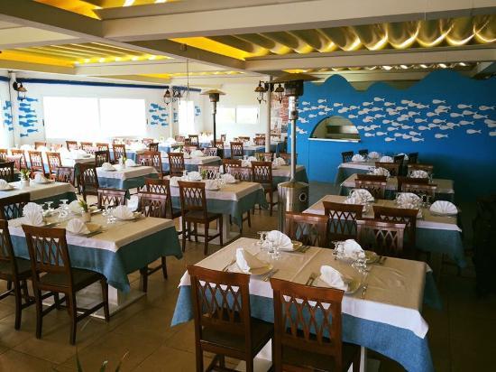 Dove il mare e la cucina s 39 incontrano belvedere gallipoli foto di belvedere gallipoli - Dove comprare la cucina ...