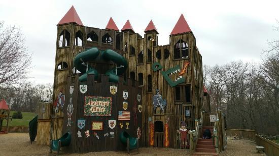 Kids Castle Picture