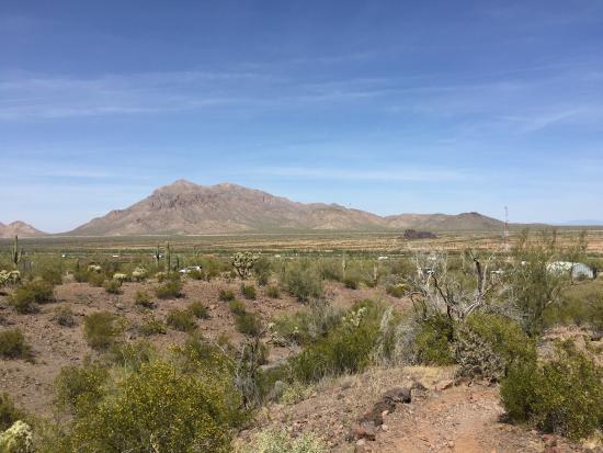 Picacho, AZ: Battlefield
