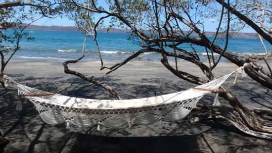 secrets papagayo costa rica  hammocks at the beach hammocks at the beach   picture of secrets papagayo costa rica      rh   tripadvisor