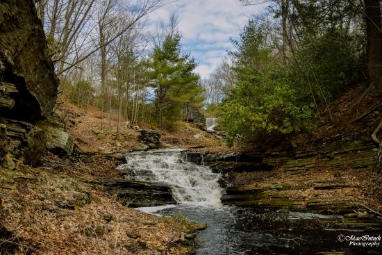 Paxton, MA : Moore State Park is very picturesque, I went here specifically for photographs.
