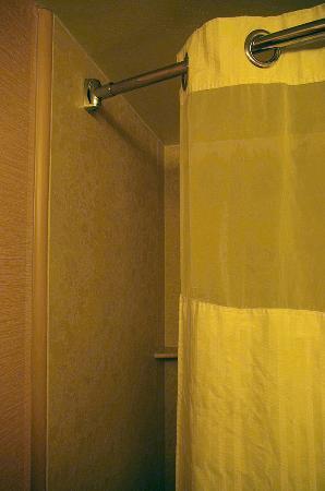 Radisson Nashua Hotel: Too short shower curtain.