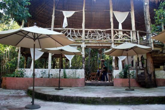 Jolie Jungle: Clubhouse/Restaurant