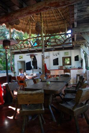 Jolie Jungle: Dining Area