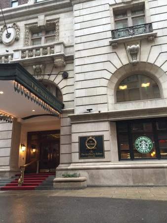 pictures of the beautiful seelbach hotel the seelbach hilton rh tripadvisor co za  hotels in louisville ky with a spa