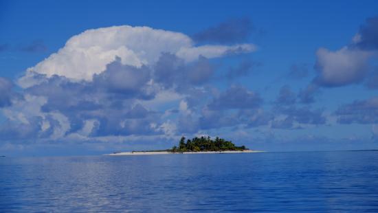 Alphonse Island-bild