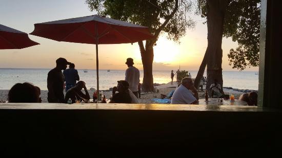 Surfside Restaurant & Beach Bar: 20160320_175940_001_large.jpg