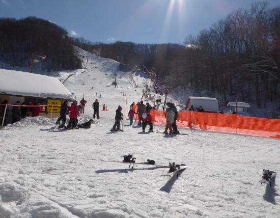 snow sports picture of ober gatlinburg amusement park ski area rh tripadvisor com