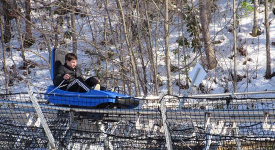 ski mountain coaster picture of ober gatlinburg amusement park rh tripadvisor com sg