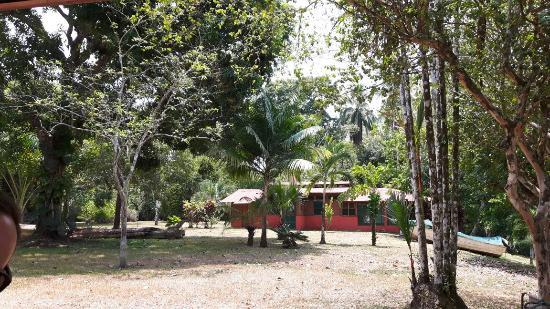 Veragua River House: 20160320_111228_large.jpg
