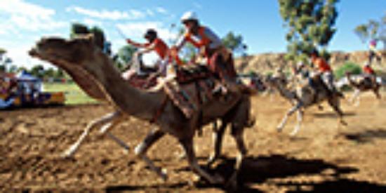Alice Springs, Australia: Apex Camel Cup