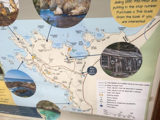 Point Lobos State Reserve : photo4.jpg
