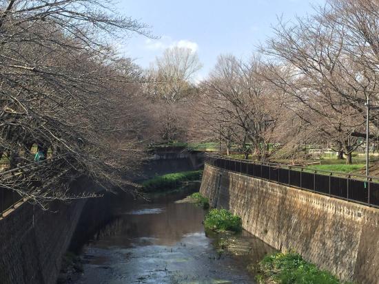 Soshigaya Park