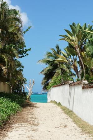 Kailua Beach Park: 天国へ続く道みたいなとこを通ってビーチにいきます