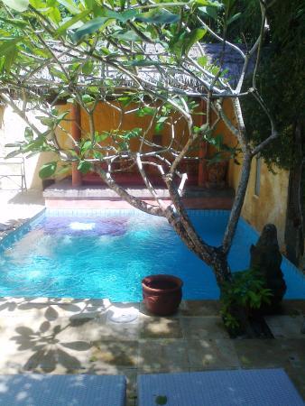 Rare Angon Villas: Pool and bale Rumah Ampel