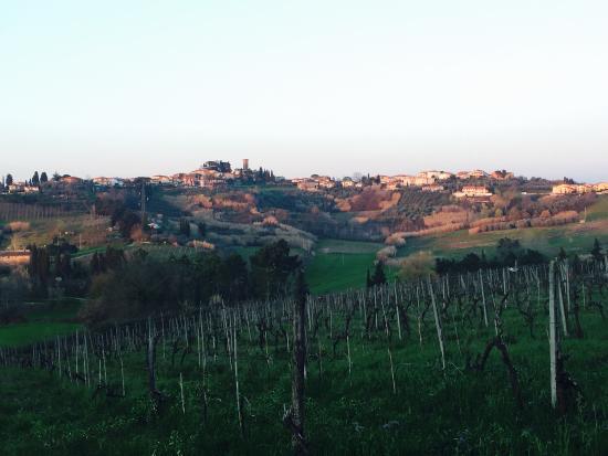 Terricciola, Italia: photo2.jpg