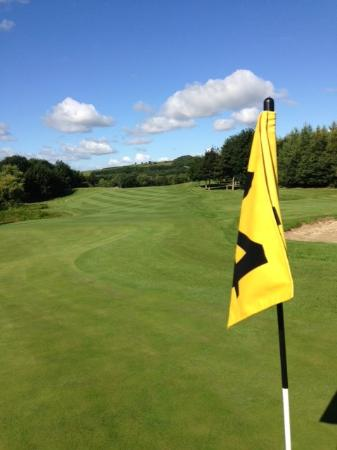 Ballyneety Golf Club: The 14th green