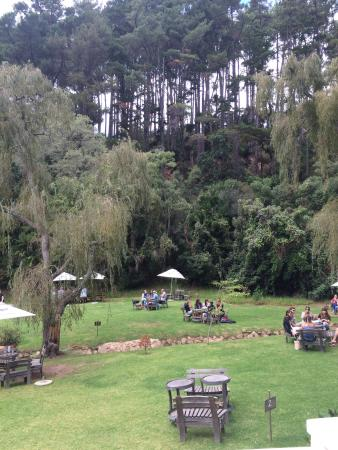 Constantia, Sudáfrica: Eagles Nest Wine