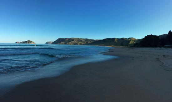 Anaura Bay Foto
