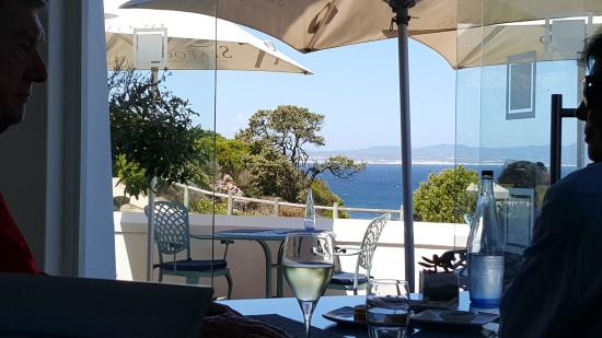 view from inside picture of seafood at the marine hermanus rh tripadvisor co nz