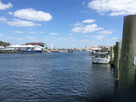 the docks picture of tarpon springs sponge docks tarpon springs rh tripadvisor com