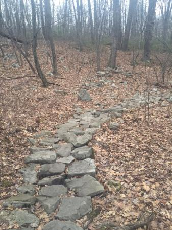 Pennsylvania: Rocks to navigate through swampy area