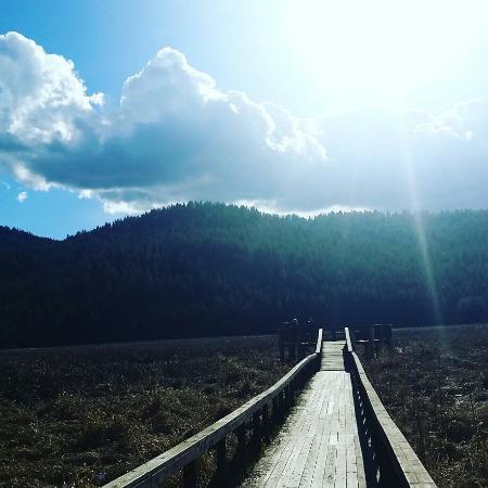 Liberty Lake trail loop