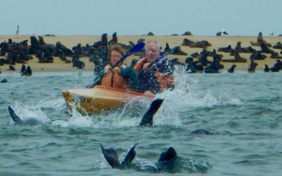 Eco Marine Kayak Tours: photo0.jpg