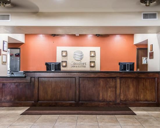 Comfort Inn & Suites Downtown: Reception area