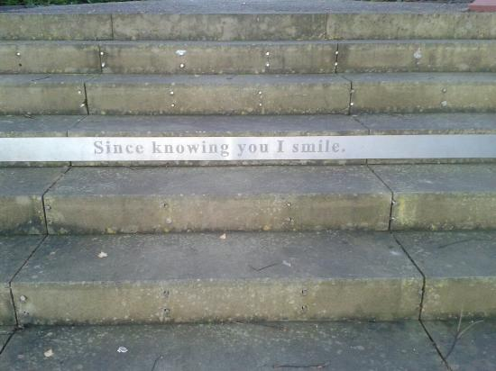 Hanley Park: 2014-11-23 16_large.jpg