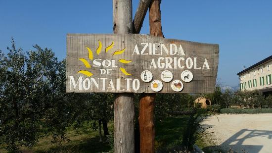 Sol De Montalto